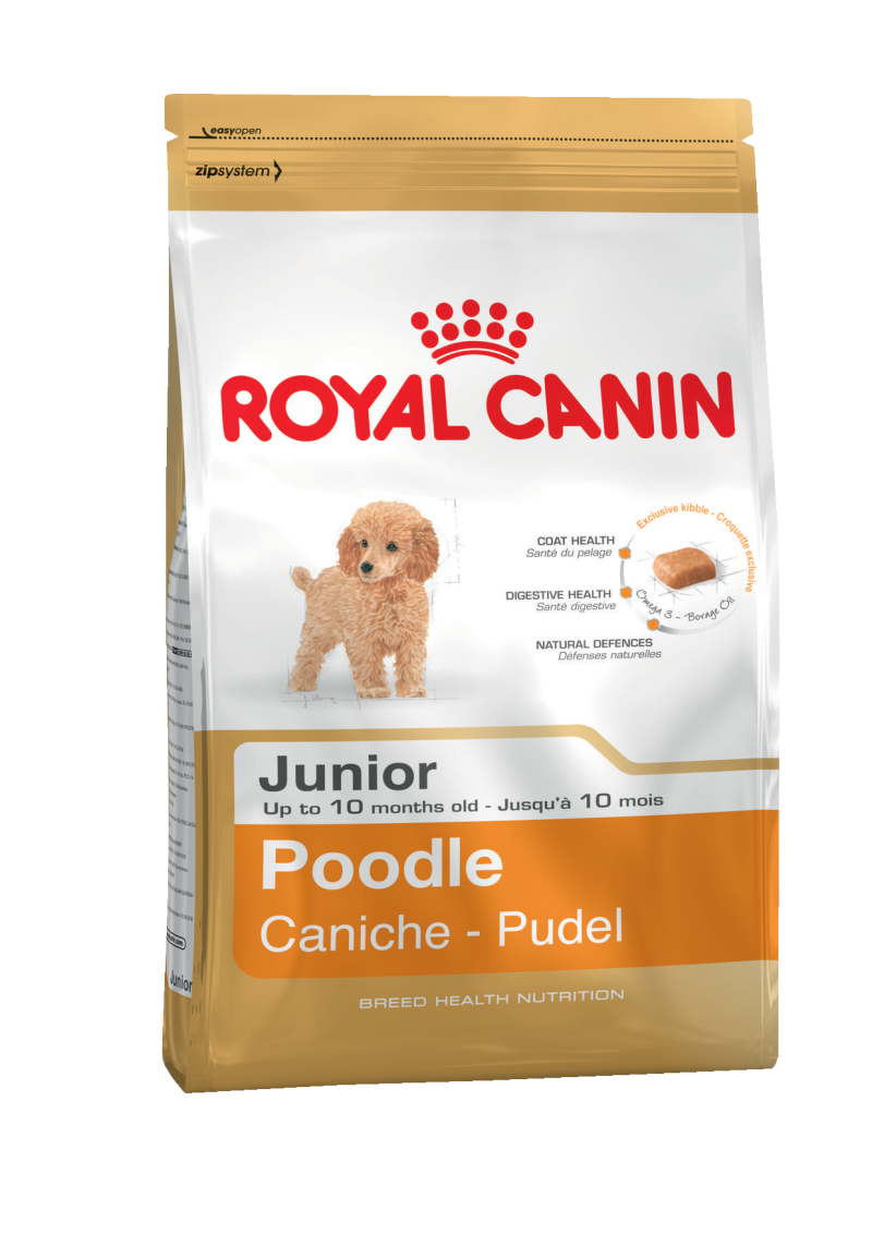 ROYAL CANIN POODLE JUNIOR щенки пудель